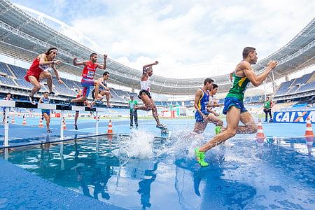 fotos, Marató, àmbit, persones, homes, Atletisme, esport