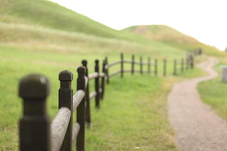 Príroda, pole, plot, drevo, Zelená, Príroda, polia
