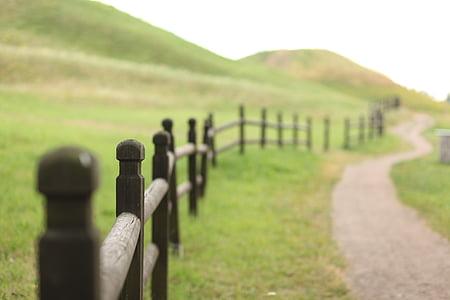 paisaje, campo, cerca de, madera, verde, naturaleza, campos