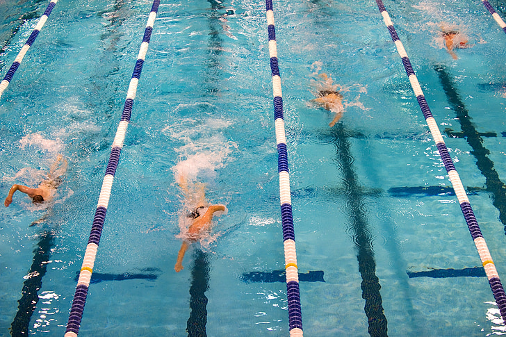 swimming, competition, swimmers, pool, lanes, race, athletes