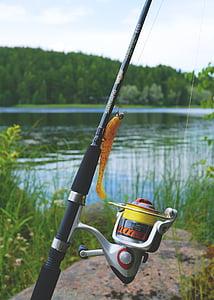 fish, fish equipment, angel, fishing line, hobby, patience, crank
