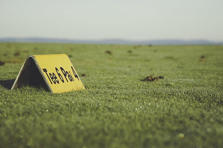 golf, golf ball, golfer, golf course, ball, tee, caddy