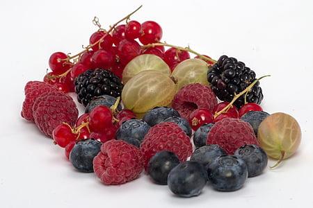 bobice, borovnice, malina, voće, voće, struja, ogrozda