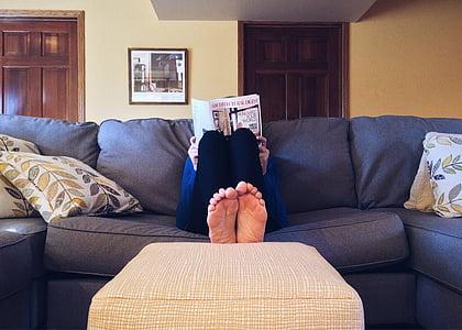 casa, vida, sofà, sofà, còmode, relaxació, mascle
