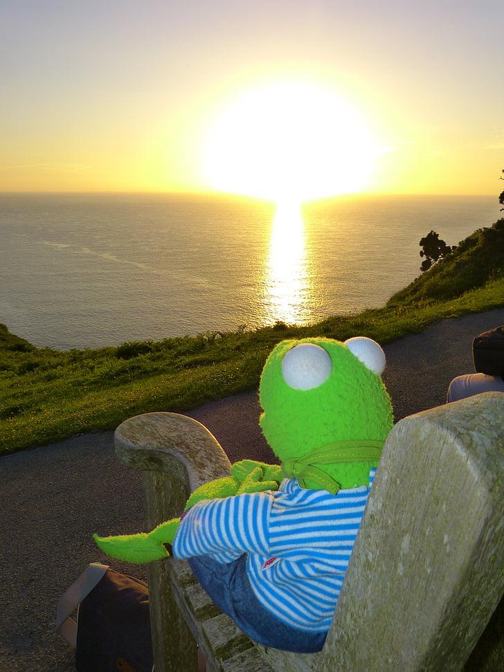 Kermit, sapo, pôr do sol, Assistir, perspectivas, mar, romântico