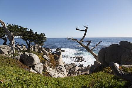 Stilla havet, Shore, Rocks, vågor, natursköna, Seascape, vatten