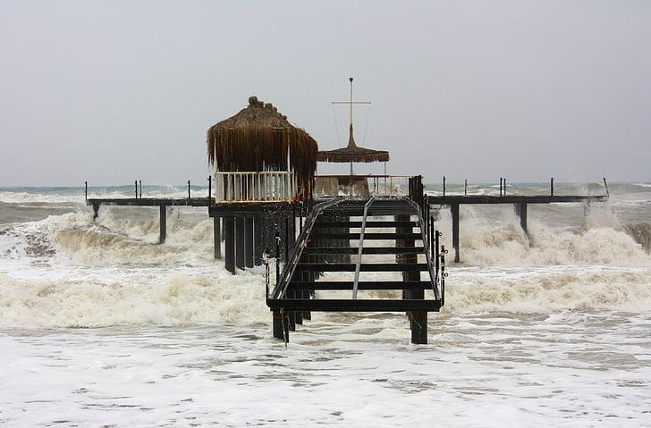 navegar per, ona, tsunami, Egipte, web, Mar, salvatge