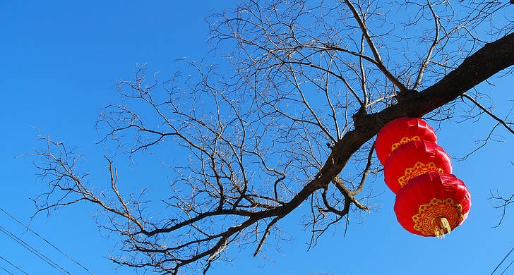 lantern, china red, festive