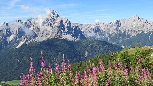 sexten dolomites, mountain hiking, nature, alpine, mountains