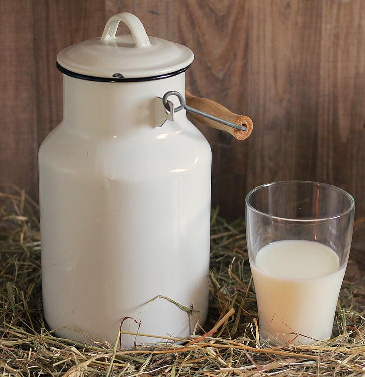 pot de llet, vidre, llet, got de llet, beguda, Frisch, deliciós