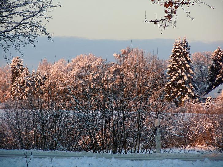 zimski, pozimi, zimsko razpoloženje, pozimi svetlobe, zimske sanje