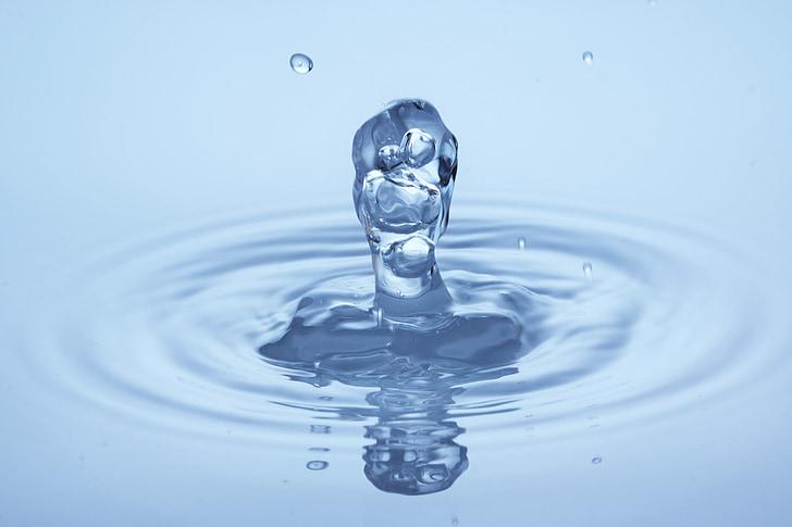 droppe vatten, makro, DROPP