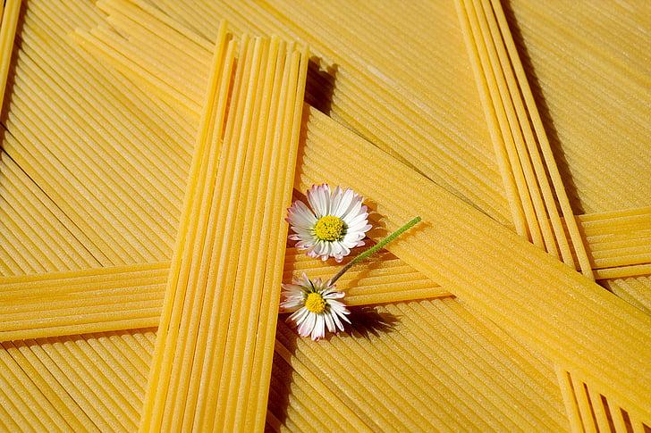 Espaguetis, fideus, pastes, aliments, groc, crua, blat dur