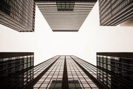 madal, nurk, Vaade, Fotograafia, kõrge, tõus, hoonete