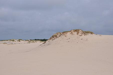 písečné duny, Pohyblivé duny, mobilní Duna, písek, na pobřeží, Příroda, pobřeží Baltského moře