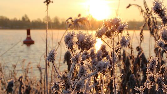 Alba, l'aigua, morgenstimmung, riu, natura, posta de sol, a l'exterior
