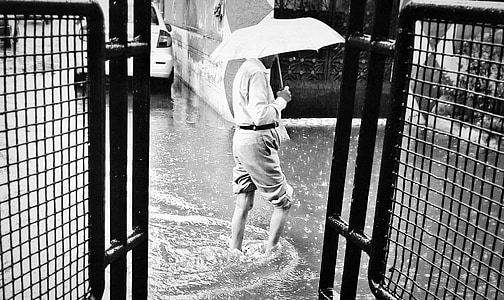 rain, rain drop, after rain, drops, background, seasons, water