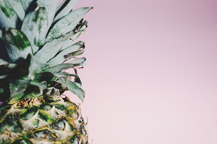 art, blur, close-up, color, food, fruit, green