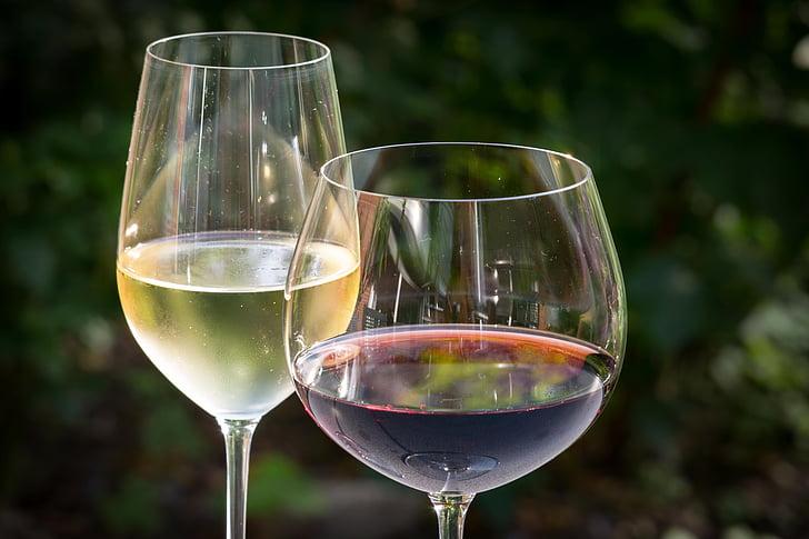 vi blanc, vi negre, vi, ulleres, copes de vi, reflectint, begudes