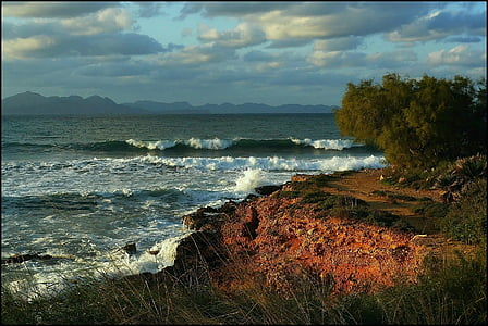 morje, Beach, vode, val, oblaki, oblak, razpoloženje