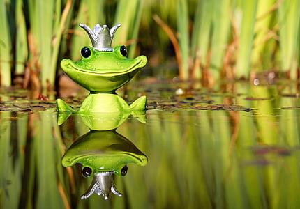 жаба, фигура, крал, Сладък, Смешно, Сладко, забавно