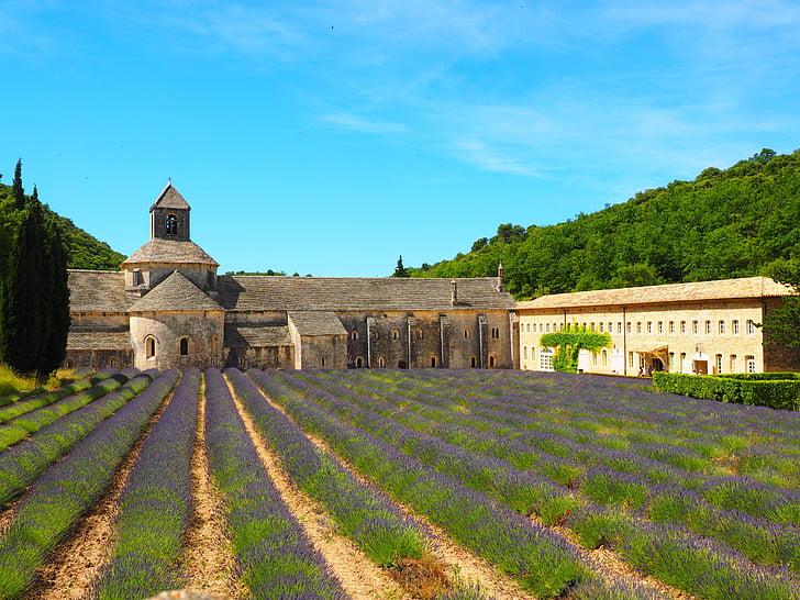 Abbaye de senanque, Monestir, l'Abadia de, Notre dame de sénanque, l'ordre del Cister, Dormitorium, l'església Abadia