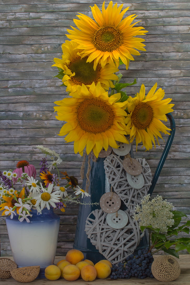 bodegons, gira-sol, flors, albercocs, déco, groc, gerra d'aigua