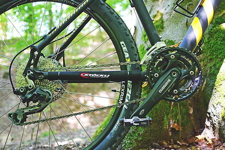 brdski bicikl, bicikl, biciklizam, kolo, aktivnost, sportski, priroda