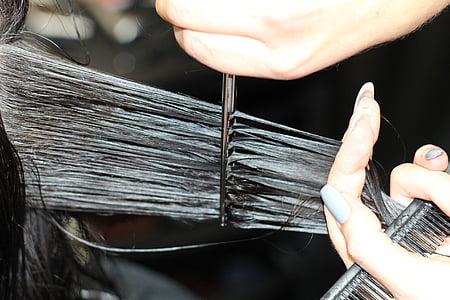 hairdressing, cutting hair, haircut, hair, comb, hair cut, scissors