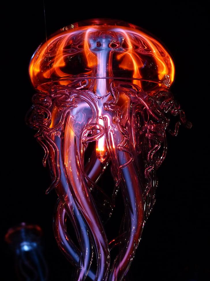 meduses, meduses lluminós, llum, fenomen de llum, lichtspiel, vidre, ulleres