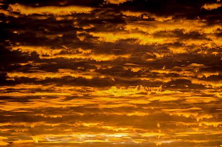 cel, posta de sol, l'estiu, or, patró, llum del sol, Sunbeam
