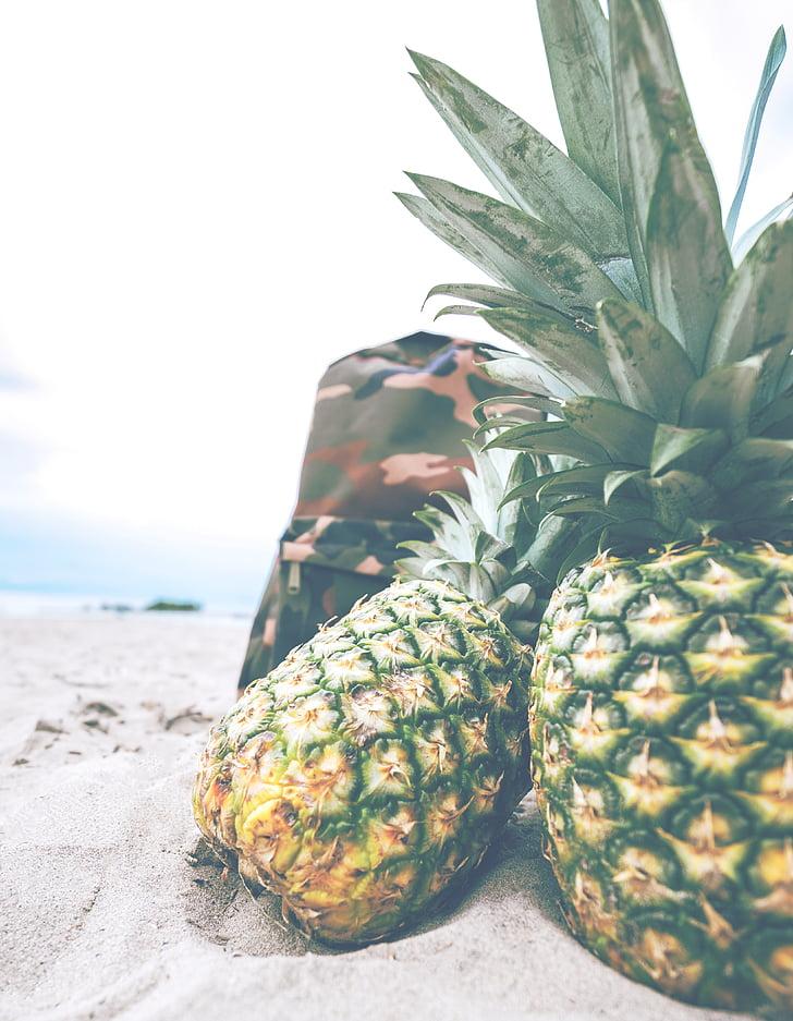 pineapples, beach, backpack, picnic, leisure, fruit, sweet