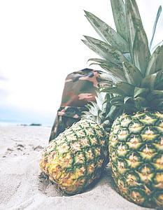 pinya, platja, motxilla, pícnic, oci, fruita, dolç