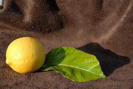 lamaie, galben, citrice, fructe