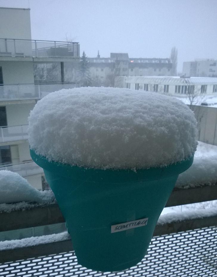 tuyết, wintry, mùa đông nổ