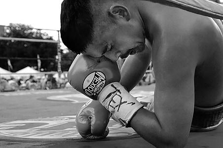 Boxer, Tex, Texas, lutador, boxe, anel, para baixo