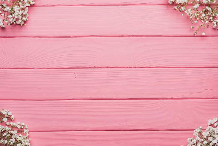 flors, fons, natura, color rosa, espai de còpia, fons, vermell