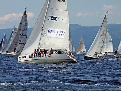 fiumanka, segling, Race, segelbåt, Yacht, vind, idrott