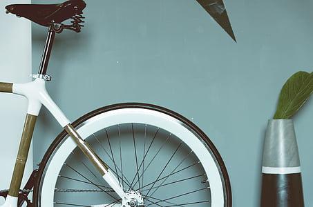 bicikala, bicikl, Krupni plan, žbice, vaza, kolo