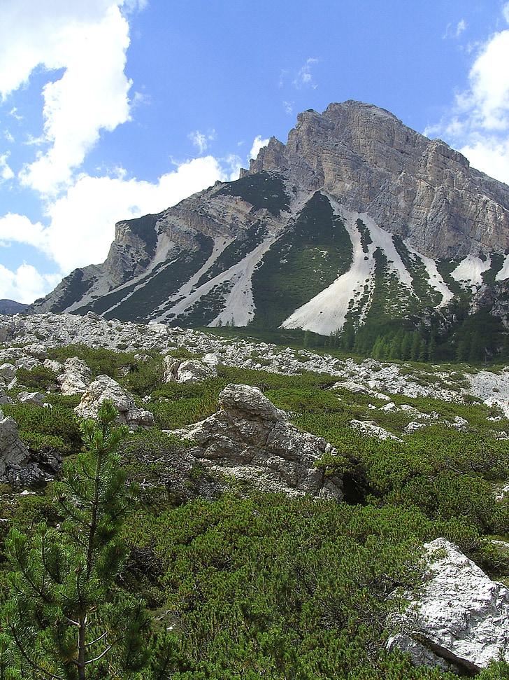 Alpina, Dolomitas, cume de montanha, prados de montanha, montanhas, natureza, paisagem