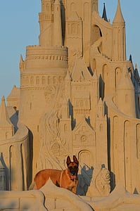 sand sculpture, structures of sand, tales from sand, fairytales sand sculpture, castle, sand castle, malinois