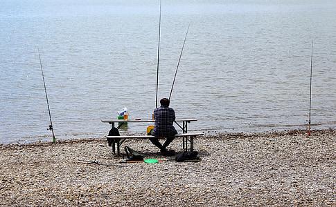 angler, fish, fishing, catch fish, man, lake, water