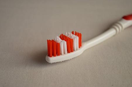 raspall de dents, atenció dental, higiene, dental, raspall, boca, dentista