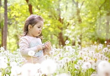 girl, dandelion, sun, nature, spring, grass, flower