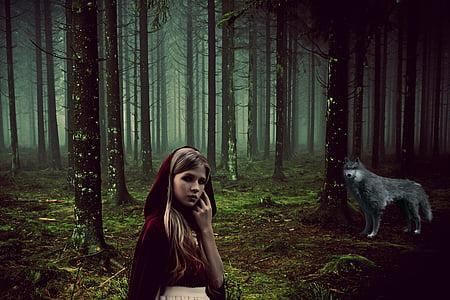 สาว, นิทาน, rotkäppchen, หมาป่า, สัตว์, ป่า, เทพนิยาย