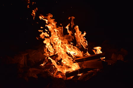foc, cremar, calenta, temperatura, flama, barbacoa, brases