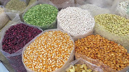 ngũ cốc, Ngô, hạt cà phê, hạt giống, tự nhiên, khỏe mạnh, ngũ cốc