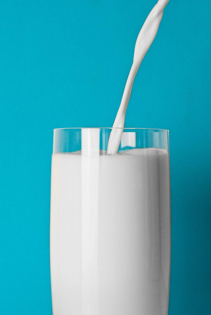 steklo, mleko, pijača, hrane, pitje kozarec, bela, svežina