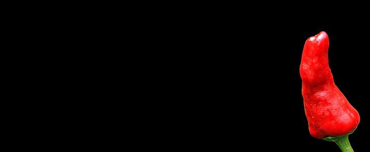 feferoni, oštar, paprike, oštrina, čili, Crveni, mahuna