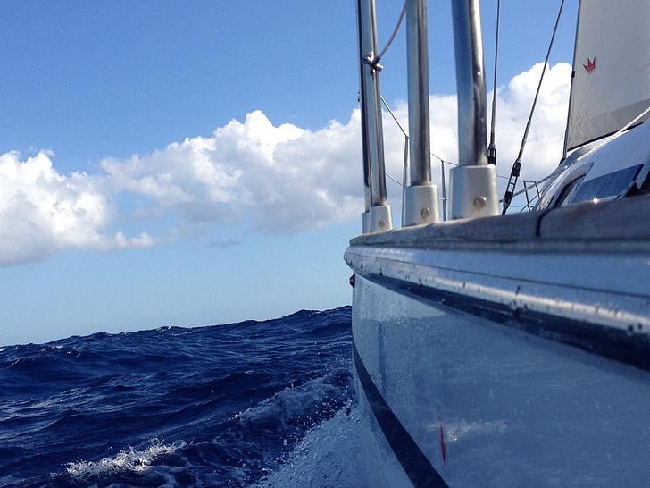 segelbåt, segel, segling, idrott, vatten, havet, sommar